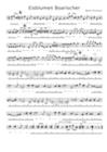 Eisblumen Boarischer v. Martin Pirschner- Griffschrift